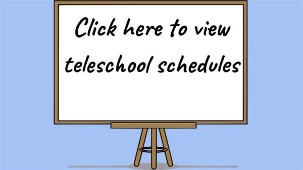 Teleschool Schedules
